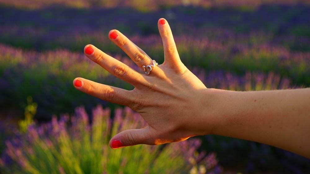hand-1595560_1920